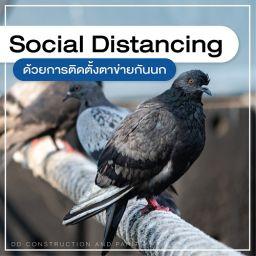 ติดตั้งตาข่ายกันนก, รับติดตั้งตาข่ายกันนก