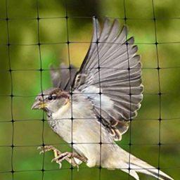 รับติดตั้งตาข่ายกันนก